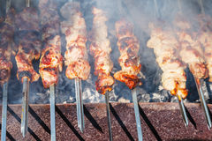 Many shish kebab skewers preparing on grill Stock Images