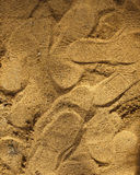 Many shoe footprints on the yellow sand Royalty Free Stock Photography
