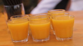 Many shot glasses with alcohol and citrus fruits juice stock footage