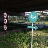 Many signs. One day in the morning I do exercise in the park. This is the way to dog park Stock Images