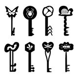 Many silhouettes of keys with the image of insects Royalty Free Stock Photo