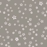 Many simple small flowers with gold core on gray ashen background. stock illustration