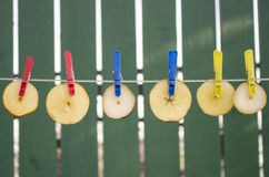 Many slices of apples hang on the rope Stock Photography