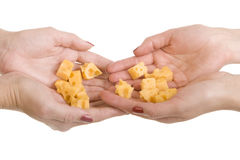 Many slices cheese on a palms Stock Photos
