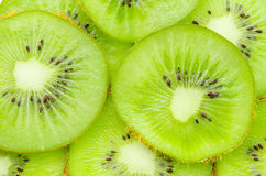 Many slices of kiwi fruit. Royalty Free Stock Photo