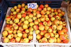 Many small apple fruits stock image
