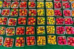 Many Colorful Cherry Tomatoes for sale at a Farmers Market stock photos