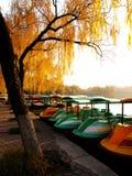 Many small boats stock photo