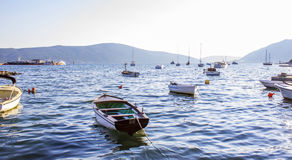 Many small boats on calm water. A lot of small boats standing anchored on calm dark water in Kotor Bay, Montenegro Royalty Free Stock Photography