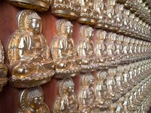 Many small Buddha statue on the wall Royalty Free Stock Photo