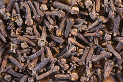 Many small dried cloves Royalty Free Stock Images