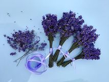 Small lavender bouquets bind and dry. Many small lavender bouquets bind and dry stock photos