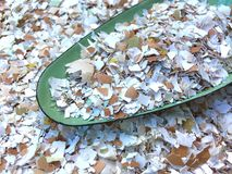 Many small pieces of broken eggshells on a green shovel Stock Image