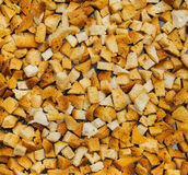 Many small pieces of dried bread Royalty Free Stock Photography
