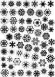 Many snowflakes royalty free stock photo
