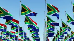 Many South African flags waving in the wind against clear blue sky. stock video footage