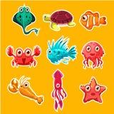 Many species of fish and marine animal life Stock Photos