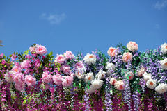Many spring flowers on bottom line under clear blue sky Royalty Free Stock Photography