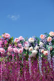 Many spring flowers on bottom line under clear blue sky Royalty Free Stock Images