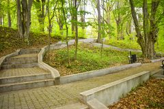 Many stairs in the park green park in a sunny spring day royalty free stock images