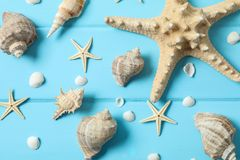 Many starfish and seashells on color wooden background, closeup and top view. Summer vacation stock photography