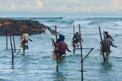 Many Stilt Fishing Sri Lanka Traditional Rock stock photo