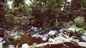 So many stones in the forest river Royalty Free Stock Photo