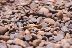 Many stones. The stones on the seashore Stock Photos