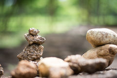 Many stones set vertical. Many brown stones set vertical stock photo