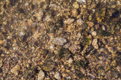 Many stones under clean transparent water Royalty Free Stock Images