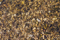 Many stones under clean transparent water Stock Images