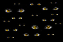 Many strange yellow eyes Royalty Free Stock Image