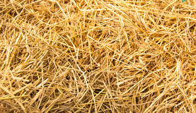 Many straw. Background royalty free stock photography