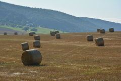 Many Straw bales lie in a landscape. Many hay bales lie in a landscape with sky Stock Images