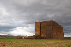 Straw bales stacked in the field Stock Images