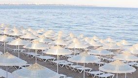 Many straw beach umbrellas at the seashore in stock footage