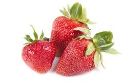 Many strawberry Stock Image