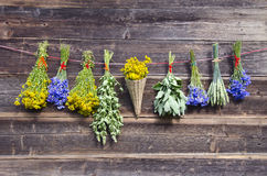 Many summer medical herbs bunches on wooden wall Royalty Free Stock Image