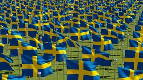 Many Sweden Flags blowing in the wind in green field. In sunny day.  3D rendering illustration Stock Photos