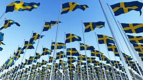 Many Sweden Flags blowing in the wind royalty free stock photos