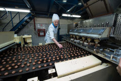 Many sweet cake food factory massive production Stock Photos