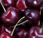 Many sweet cherry at day Royalty Free Stock Photo