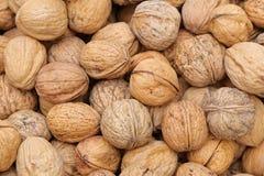 many table walnuts 农业背景 免版税库存照片