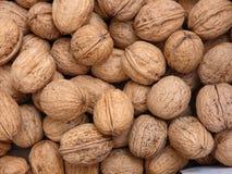 many table walnuts стоковое фото