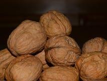 many table walnuts Στοκ Φωτογραφίες