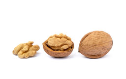 many table walnuts 图库摄影