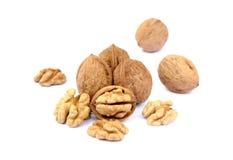 many table walnuts 免版税图库摄影