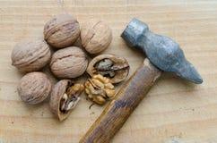 many table walnuts Стоковое Изображение