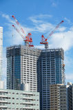 Many tall buildings under construction and cranes under a blue sky Royalty Free Stock Image