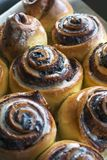 Many tasty and fresh cinnamon rolls close-up Royalty Free Stock Images